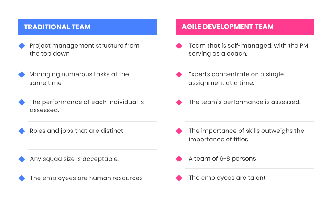 Dedicated Software Development Team will follow Agile guidelines
